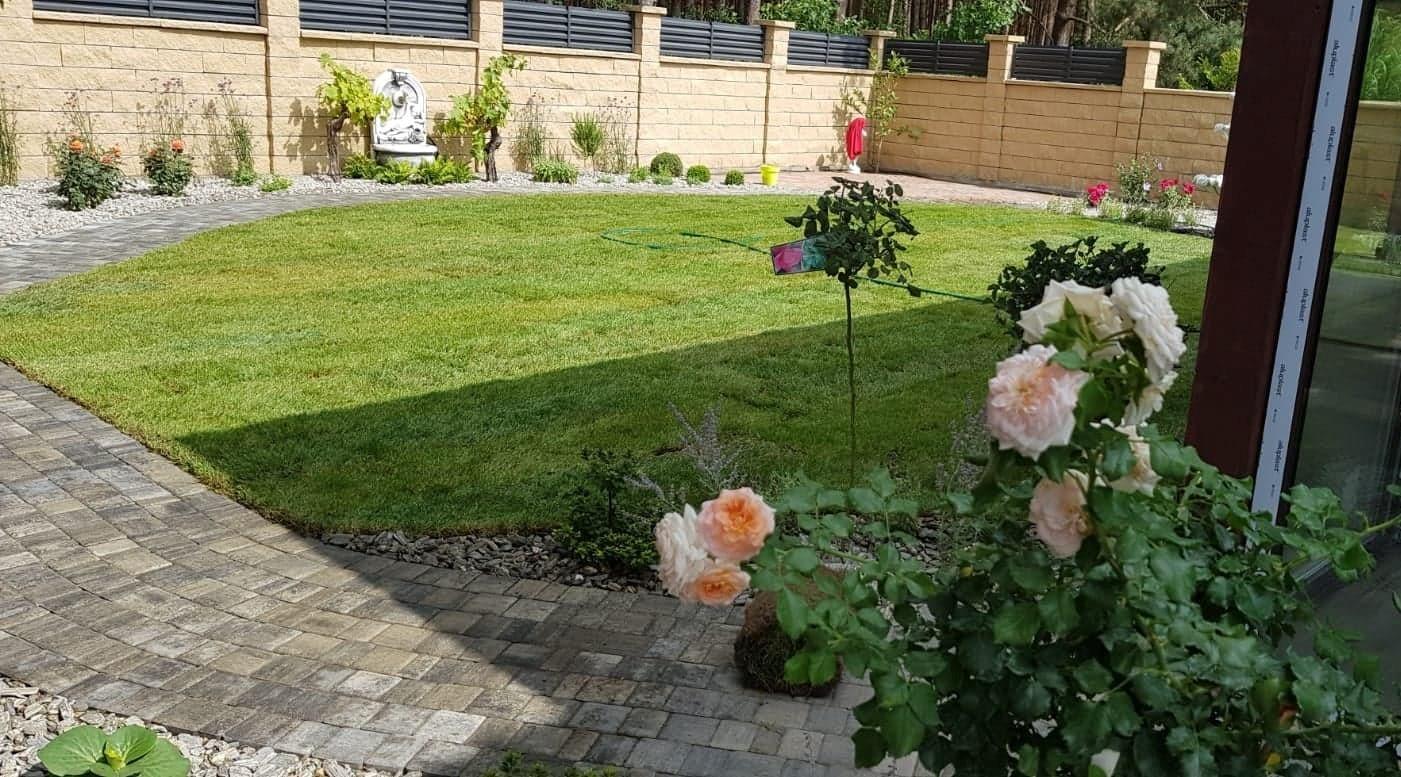 zakładanie trawnika poznań