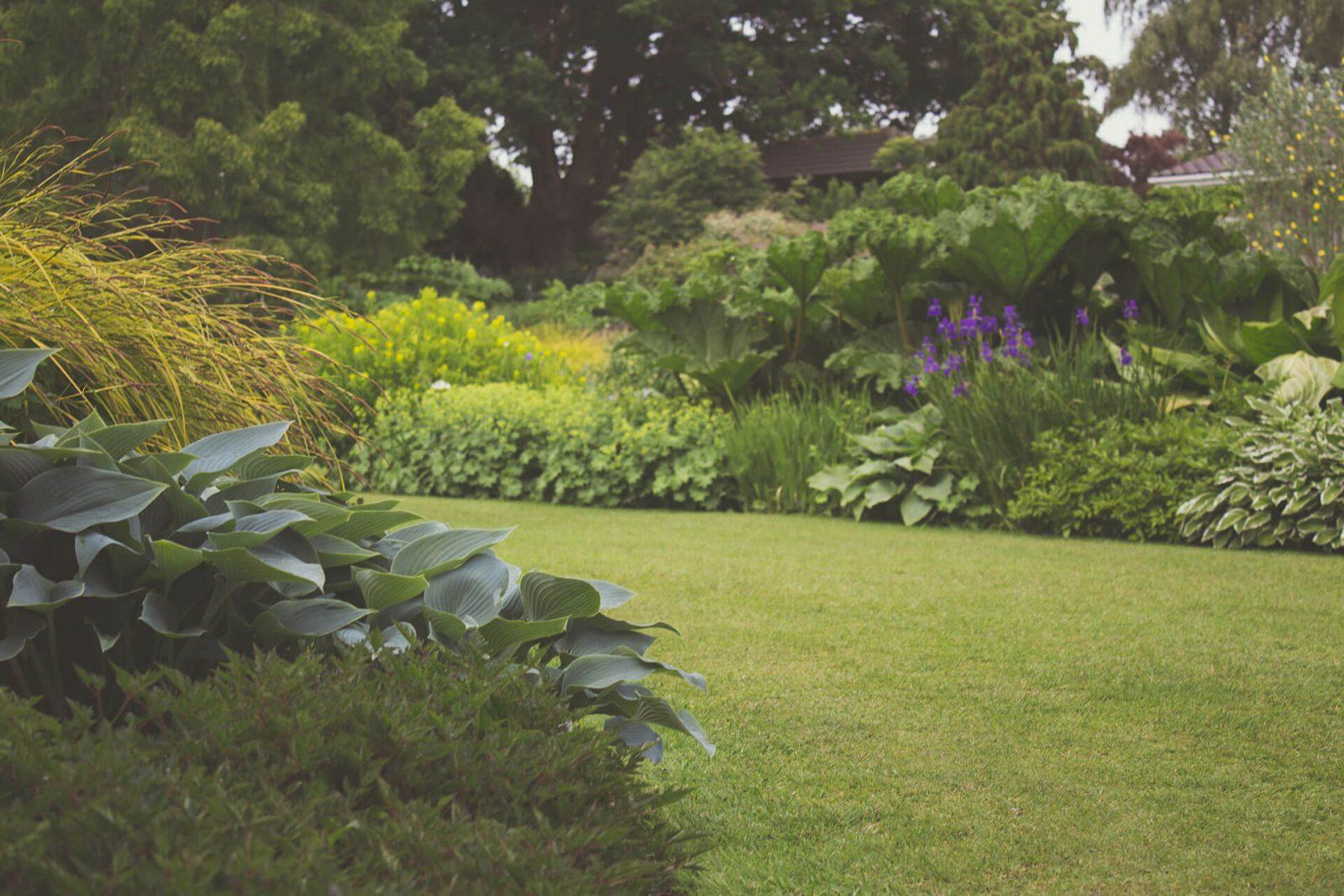 pielęgnacja ogrodu poznań